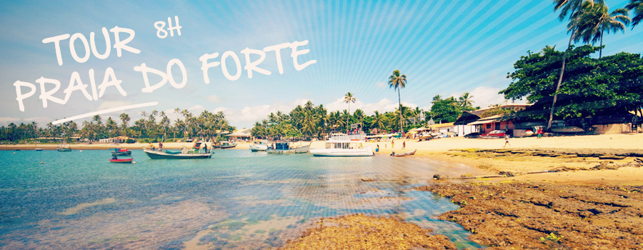 Tour Praia do Forte